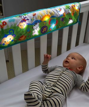 FISHER PRICE Rainforest Friends Crib/Cot Rail Soother